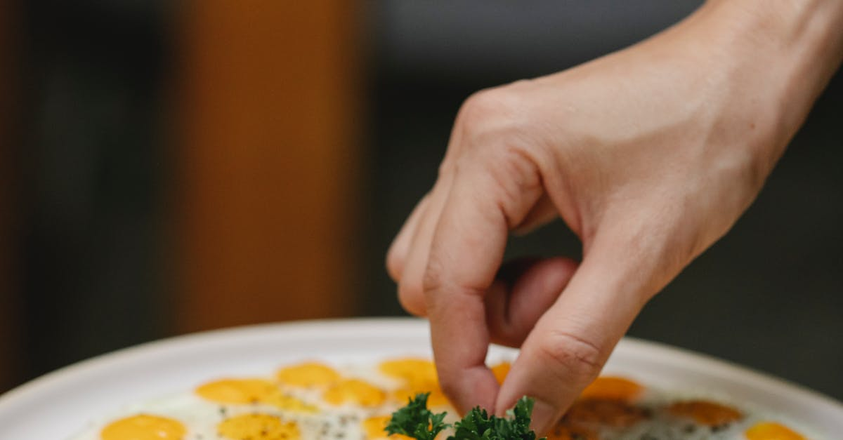 A person holding a plate of food